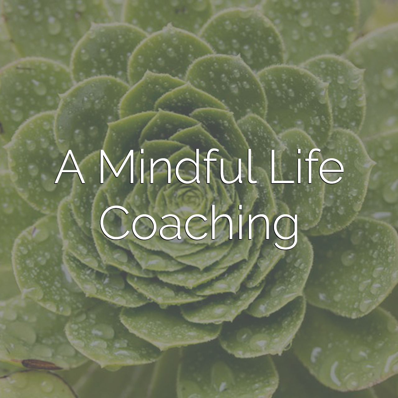 A Mindful Life | Coaching